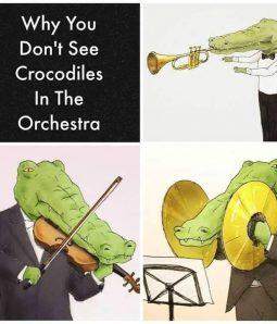 Cocodrilos Orquesta