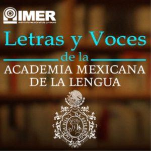 LETRAS Y VOCES-min