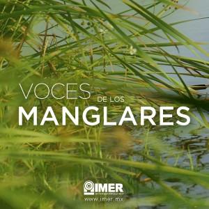 vocesmanglares_fbk
