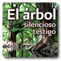 El árbol, silencioso testigo de la historia con Diana Marchal.