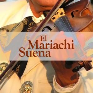 el_mariachisuena_avatar