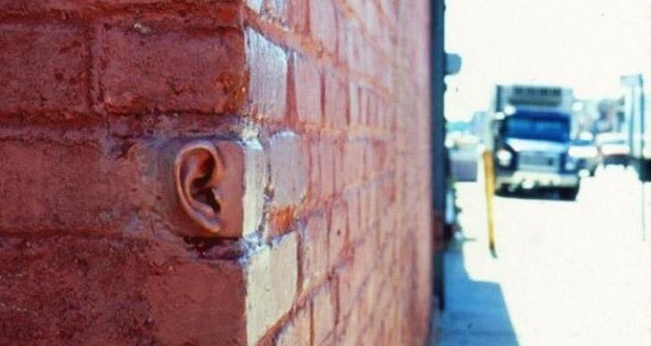 paredes-oyen