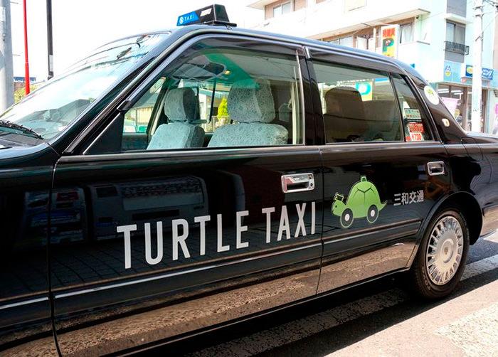 taxi tortuga japón