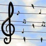 Miscelánea del sonido (2000-2003)