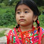 Pueblos Indígenas (2002)